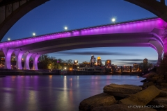 Bridge & Skyline: 1 Year Prince Memorial